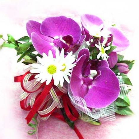 胸花-蝴蝶蘭和瑪格莉特