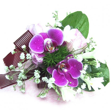胸花-雙朵蝴蝶蘭