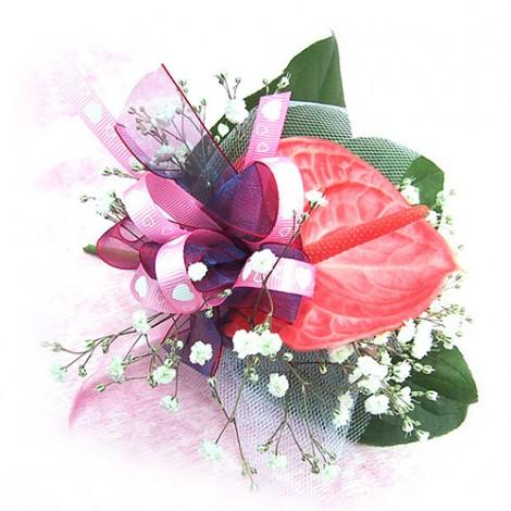 胸花-紅火鶴