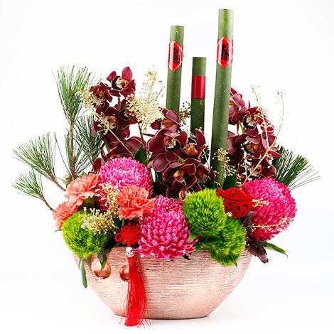 春節佈置 富貴吉慶盆花 春節送禮祝賀冠軍