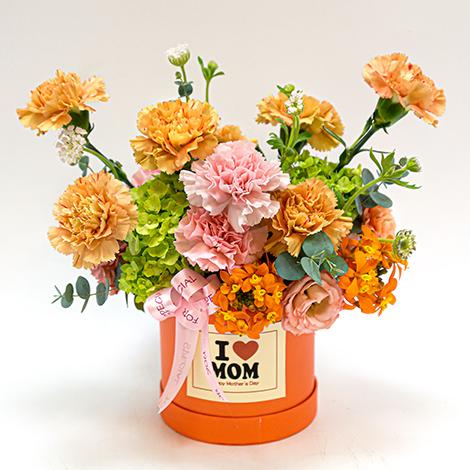 母親節花禮 祝福乾燥花盆花