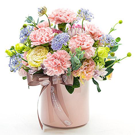 愛在心裡康乃馨花禮 送母親節卡片