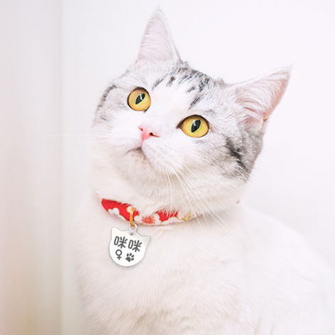 寵物客製化禮品 貓咪造型寵物吊牌